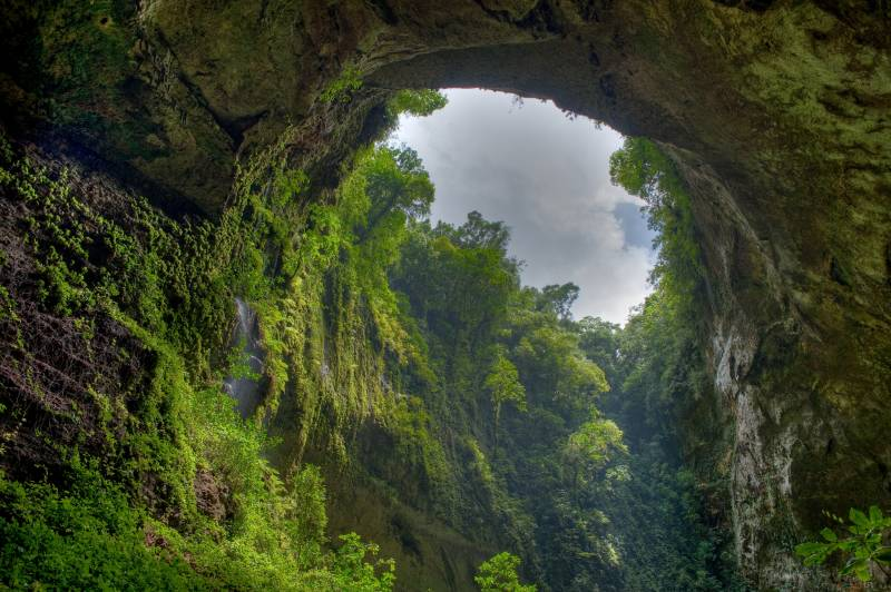 Fond Ecran Nature Arche Naturelle Dans La Jungle Magnifique Beaute Nature Fonds Ecran
