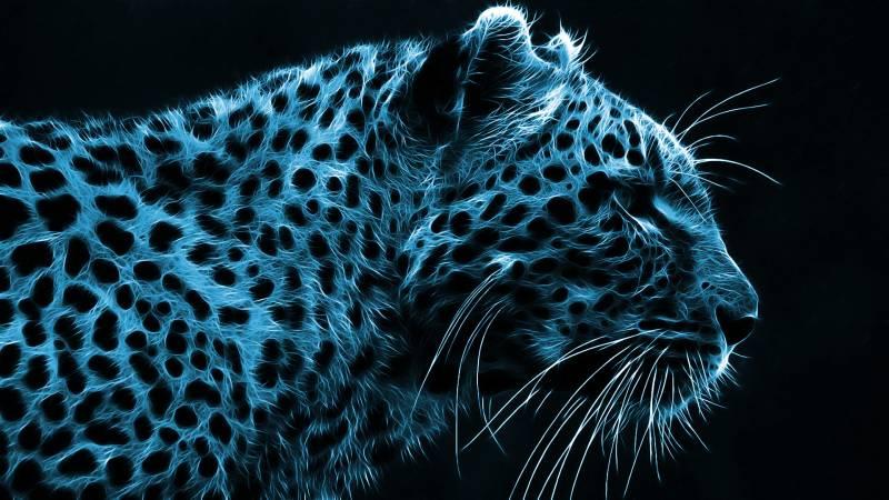 tete de leopard image artistique couleur bleu noir fond ecran fonds cran. Black Bedroom Furniture Sets. Home Design Ideas